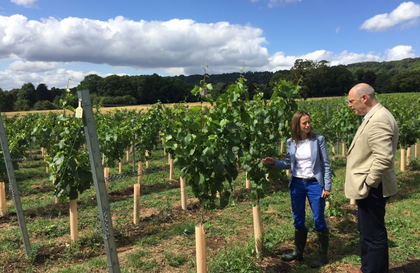 Visiting Chapel Down's vineyard in Boxley